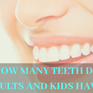 How many teeth do adults and kids have_